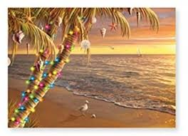 Decorate Palm Trees With Christmas Lights by Amazon Com Christmas Cards Box Set 16 Cards And 16 Envelopes