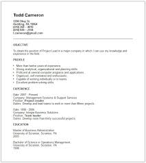 Example Resume Doc Resume Template Example