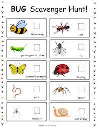 bug jar math printables free printable kindergarten and math