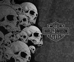 harley davidson skull logo history bonus wallpaper