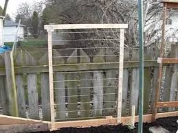easy pea trellis trellis for vegetables made quickly and cheaply youtube
