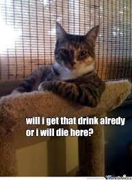 Drunk Cat Meme - drunk cat by ides rezes meme center