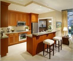 interior design ideas kitchen pictures small kitchen designs indian style interior design for flats home
