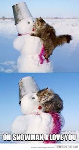 Snowman Meme - oh snowman snowman cat and animal