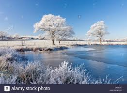 white hoar frosted trees and frozen lake on a cold winter morning