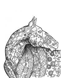 the amazing world of horses coloring book i cindy elsharouni