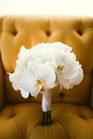 Orchid Bouquet Best 25 White Orchid Bouquet Ideas On Pinterest Orchid Bouquet