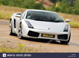 lamborghini gallardo uk supercars on track uk lamborghini gallardo stock photo royalty
