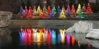 brookfield zoo winter lights zoolights2 jpg