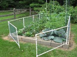 vegetable garden fence ideas stylish pvc garden fence fence ideas diy pvc garden fence