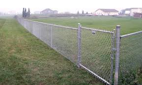 Decorate A Chain Link Fence Which Fence Should I Buy Galvanized Or Pvc Coated Chain Link