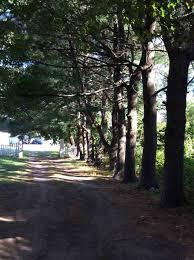 188 walton road seabrook nh 03874 seabrook real estate mls