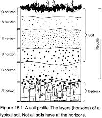 understanding soil universal love pinterest study help