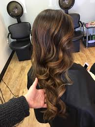 Caramel Hair Color With Honey Blonde Highlights Golden Honey Warm Highlights For Chocolate Brown And Dark Brown