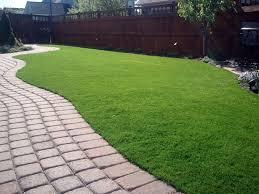 fake grass frederick colorado dog run backyard landscaping ideas