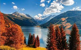 Beautiful fall leaves around the world travel leisure