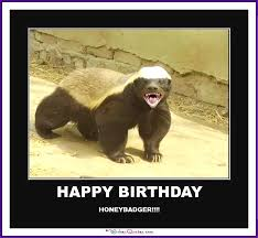 Meme Honey Badger - happy birthday memes with funny cats dogs and cute animals