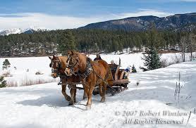 winter sleigh ride rwinslow