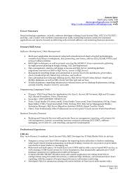 Skill Set Resume Examples by Summary For Accounting Resume It Resume Cover Letter Sample