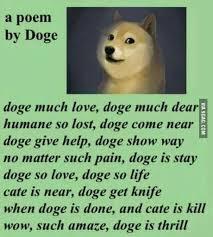 Such Doge Meme - much poem wow such doge 06 random pinterest doge memes