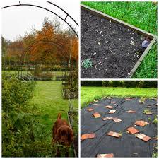 managing an organic vegetable garden u2013 part 1 u2013 peonies u0026 posies