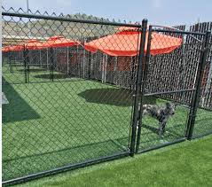 best dog boarding kennel building our new kennels are open at