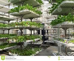modern green house modern greenhouse stock photo image of house fruit 51714596