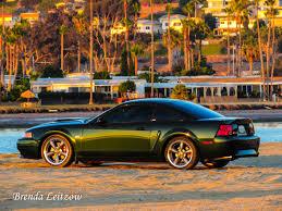 2001 Black Mustang Gt Fiesta Island 2001 Ford Mustang Gt Bullitt 2001 Ford Gt