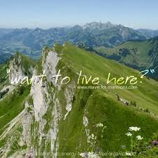91 best Take Me to the Mountains images on Pinterest