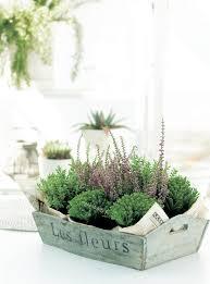 Urban Herb Garden Ideas - 124 best urban gardening images on pinterest plants gardening
