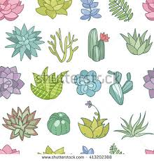 cute succulent flowers collection set vector stock vector