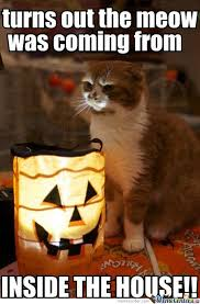 Scary Halloween Memes - kitten tells a scary halloween story by farb meme center
