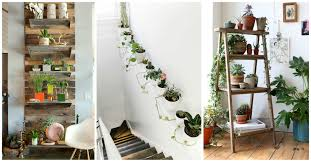unexpected ways to decorate your home with plants