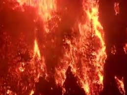 How Many Wildfires In Washington State by Officials 80 Large Fires Burning Across Nine States Kfor Com