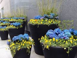 planters inspiring large flower planters large flower planters