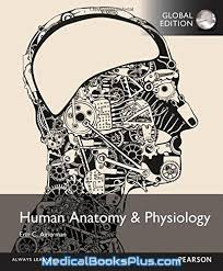 Human Anatomy And Physiology Pdf File Human Anatomy And Physiology Global Edition Download Medical