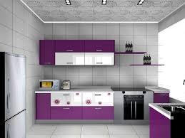 purple color kitchen cabinet