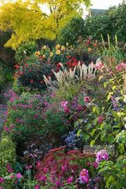 Find My Garden Zone - varying height abundant plant flower bed in zone 4 but some can