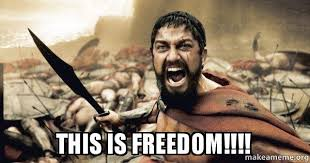 Freedom Meme - this is freedom the 300 make a meme