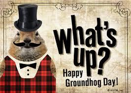 groundhog day cards groundhog day groundhog day ecard blue mountain ecards