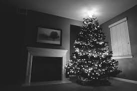 how to get your tree lights to sparkle like magic