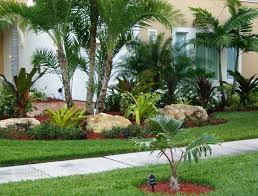 Front Yard Landscaping Ideas Pictures by Tropical Front Yard Landscaping Ideas With Palm Trees This For