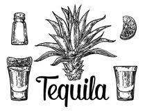hand drawn sketch set of alcoholic cocktails illustration