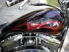 motorcycle ghost flames