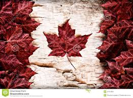 real leaf canada flag on birch bark stock photos image 34161893