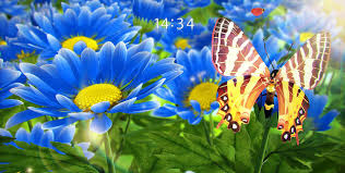 photos of flowers my flower 3d live wallpaper android apps on google play