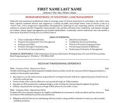 it manager resume manager resume sle tomyumtumweb