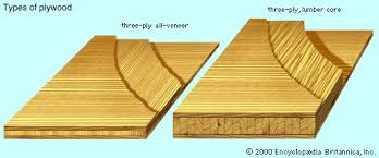 All Common Types Of Wood Joints And Their Variations by Wood Plant Tissue Britannica Com