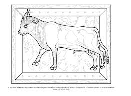 colour your own medieval animals colouring books amazon co uk