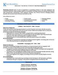 john biden resume hero college essay thesis on management